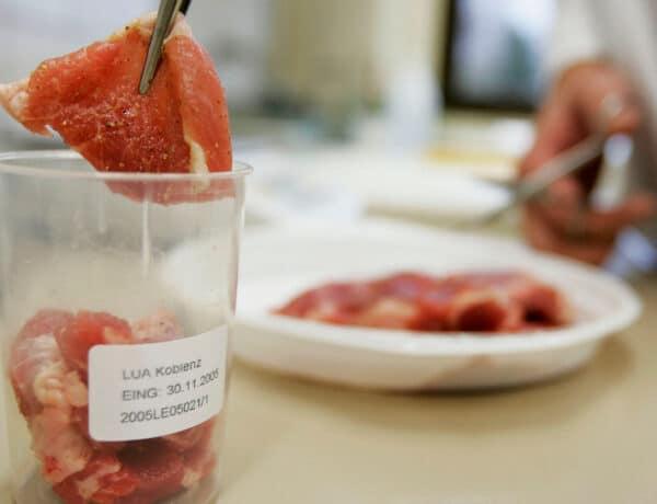 Néhány éven belül szintetikus húst is ehetünk! Nagy jövő elé néz a labor-hús piaca