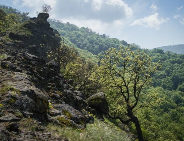 Spirituális energiákat sugárzó helyek Magyarországon