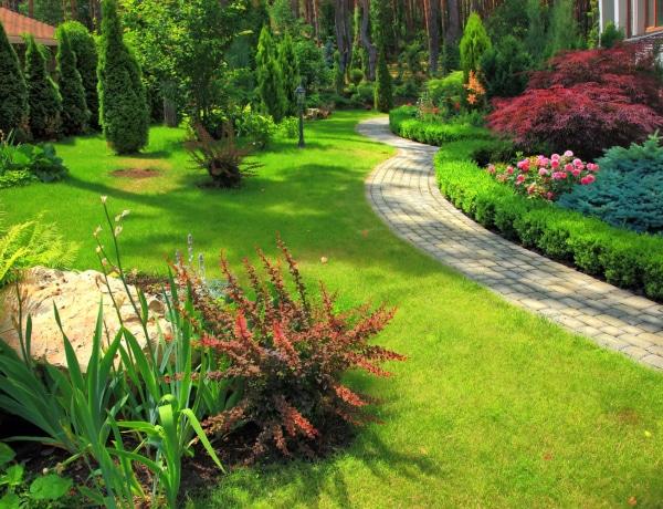 Tavaszi teendők a kertben – Metszés, gyepgondozás és ültetés