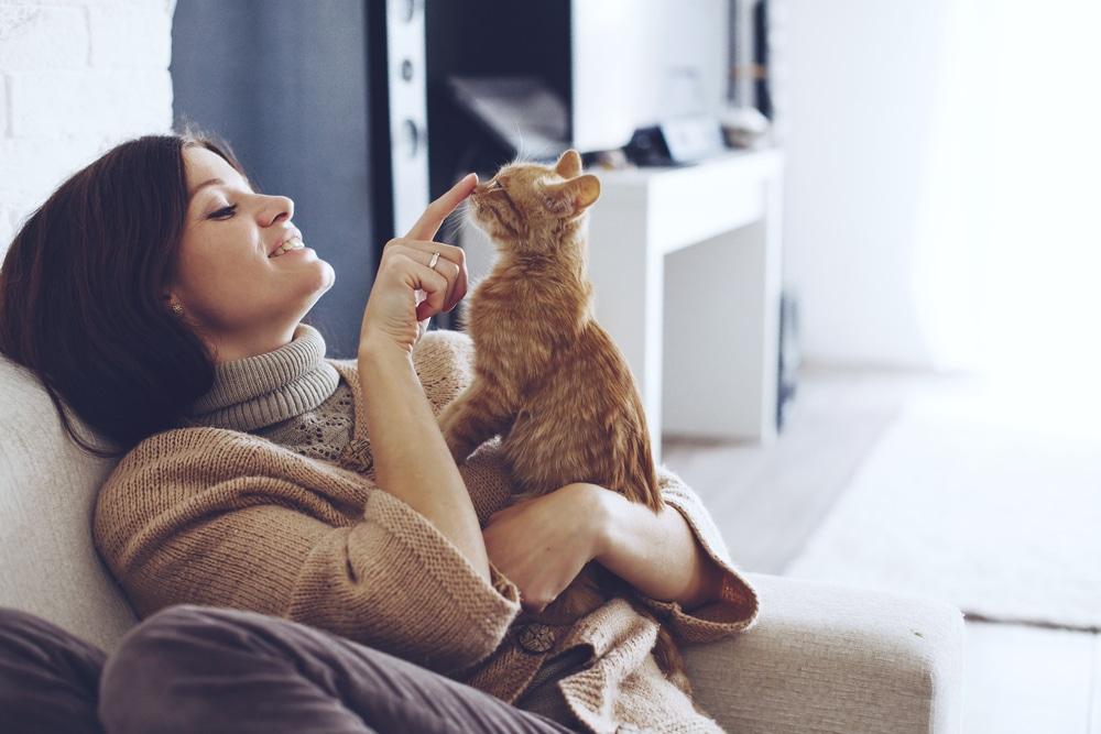 Tudományos tény: a macskád jót tesz az egészségednek