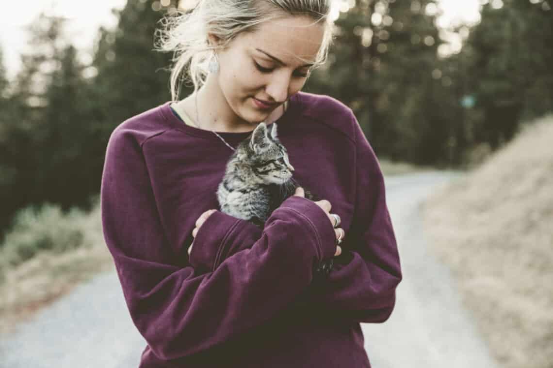 Védőoltás védhet meg a macskaszőr-allergiától – egy tanulmány szerint
