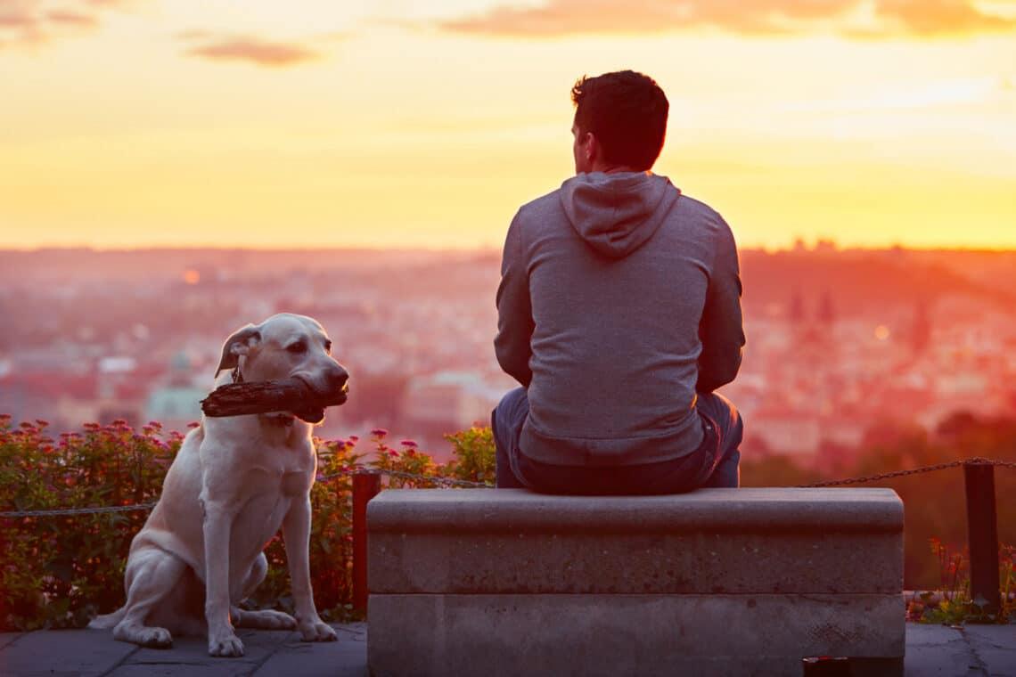 5 jel, hogy az exed még nincs túl rajtad – Csak úgy tesz