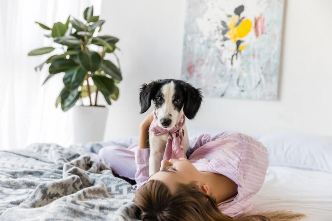 Lehet, hogy a nők jobban alszanak egy kutya, mint egy ember mellett