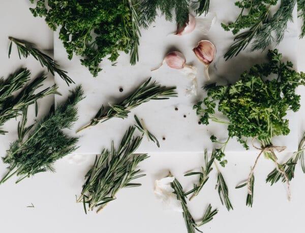 5+1 nem mindennapi fogás, ami a kertedben megtermő fűszernövényekből készülhetnek