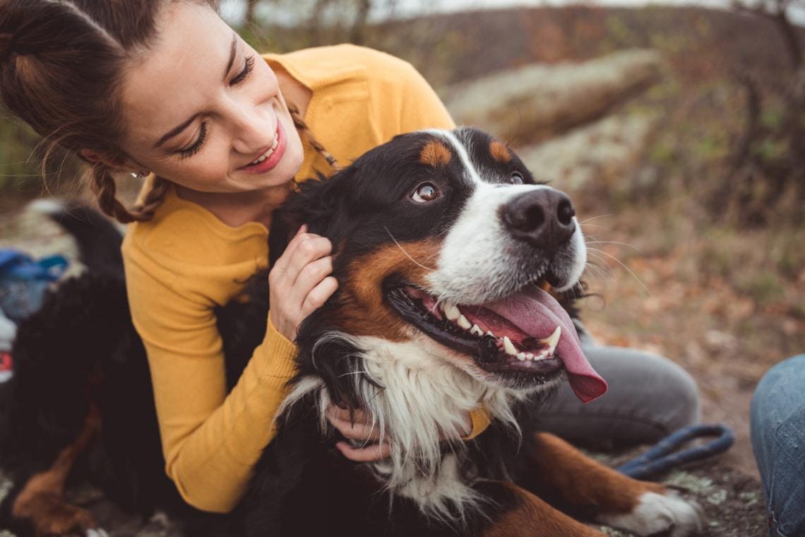 10 meghökkentő tény a kutyákról, amitől biztos leesik az állad