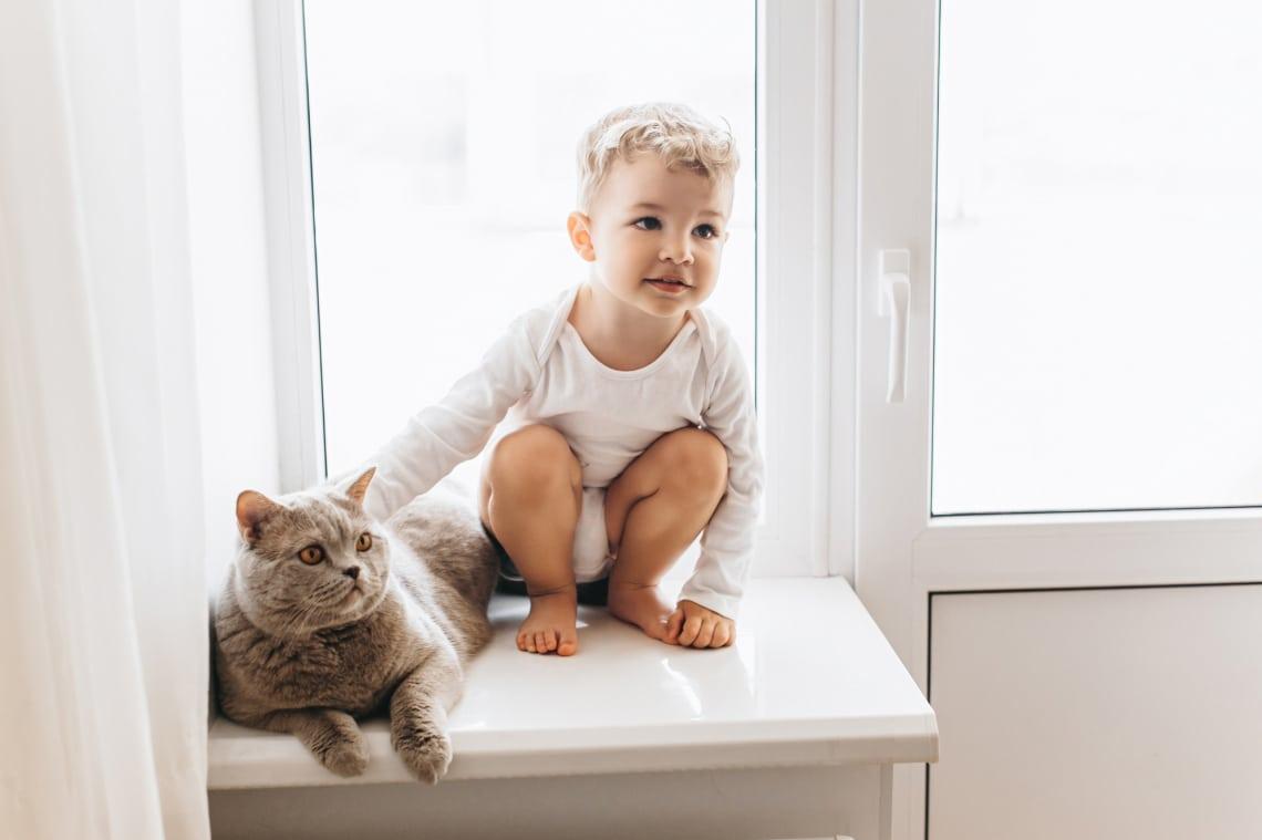 Az életem egy babával és egy cicával