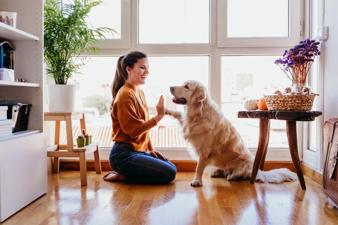Ezeket a cuki neveket adják leggyakrabban a kutyáknak a gazdik – Fajtákra bontva