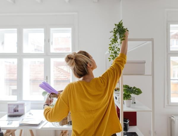 3 évig laktam egy apró garzonban: 5 hasznos rendszerezési trükk