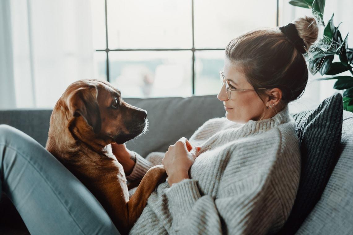 Kutyával az élet – az első pánikhelyzet, kutyasuli és a kavargó gondolatok: kellett ez nekem?