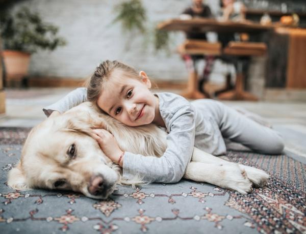Egy háziállat elvesztése mentális problémákat okozhat a gyereknél