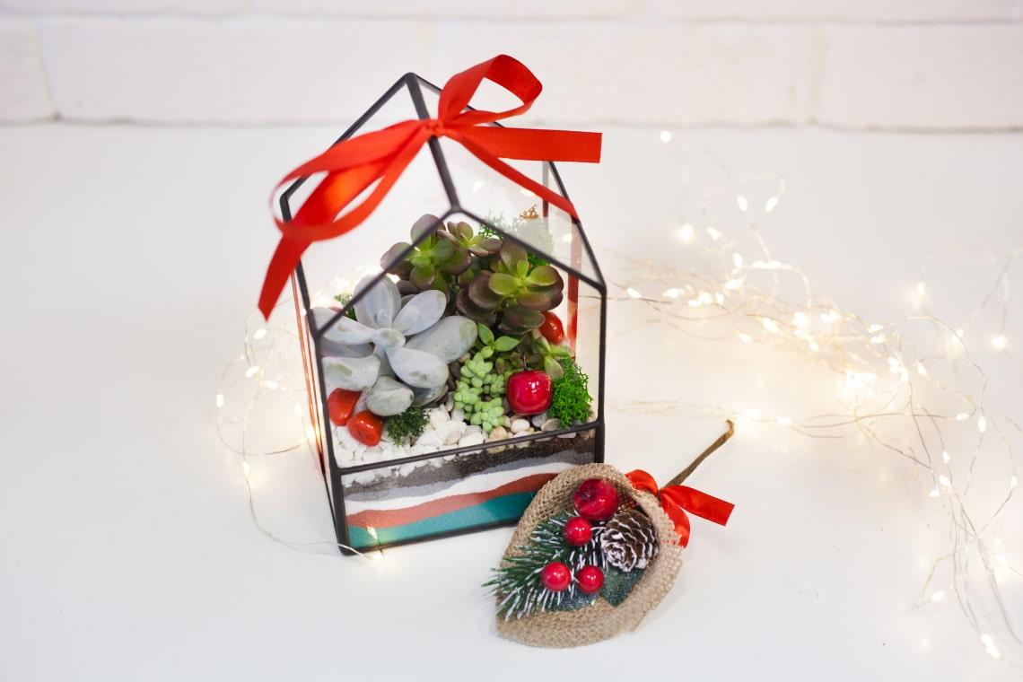 Így lesznek a pozsgásokból csodaszép karácsonyi dekorációk