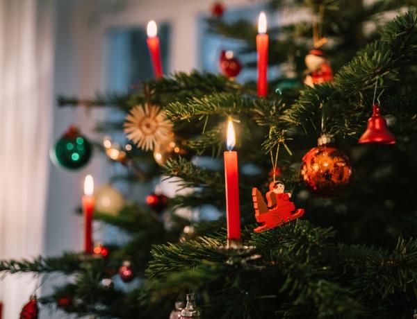 5 trükk, amivel lassabban szárad ki a karácsonyfád