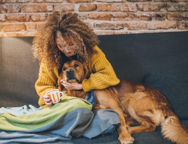 Kiderült, hogy az ölelést, vagy a dicséretet kedvelik-e jobban a kutyák