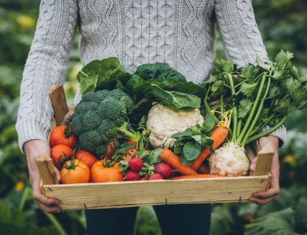 Ezzel a 4 étkezésbeli változással rengeteget segítesz a bolygónak