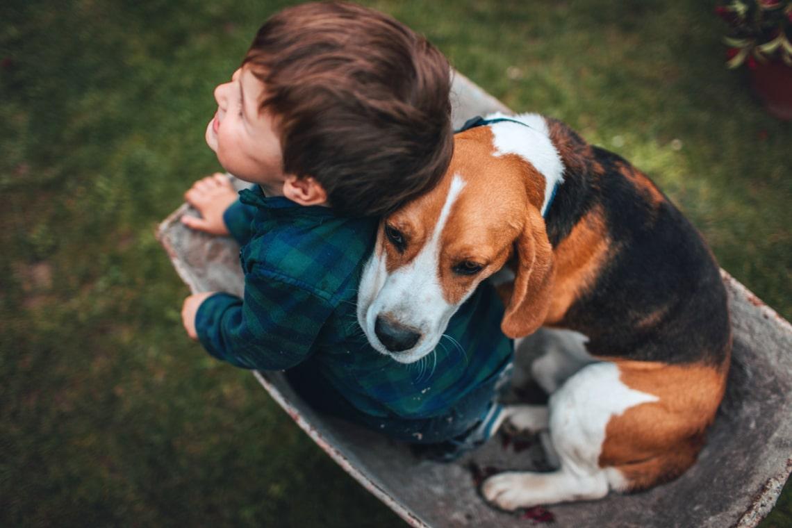 Családbarát kutyát keresel? Ez a 7 fajta imádja a gyerekeket is