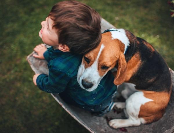 Családbarát kutyát keresel? Ez a 7 fajta imádja a gyerekeket