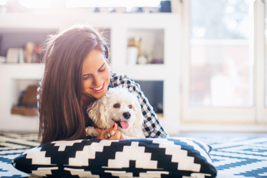 8 dolog, amit a kutyák utálnak, a gazdik pedig rendszeresen csinálják