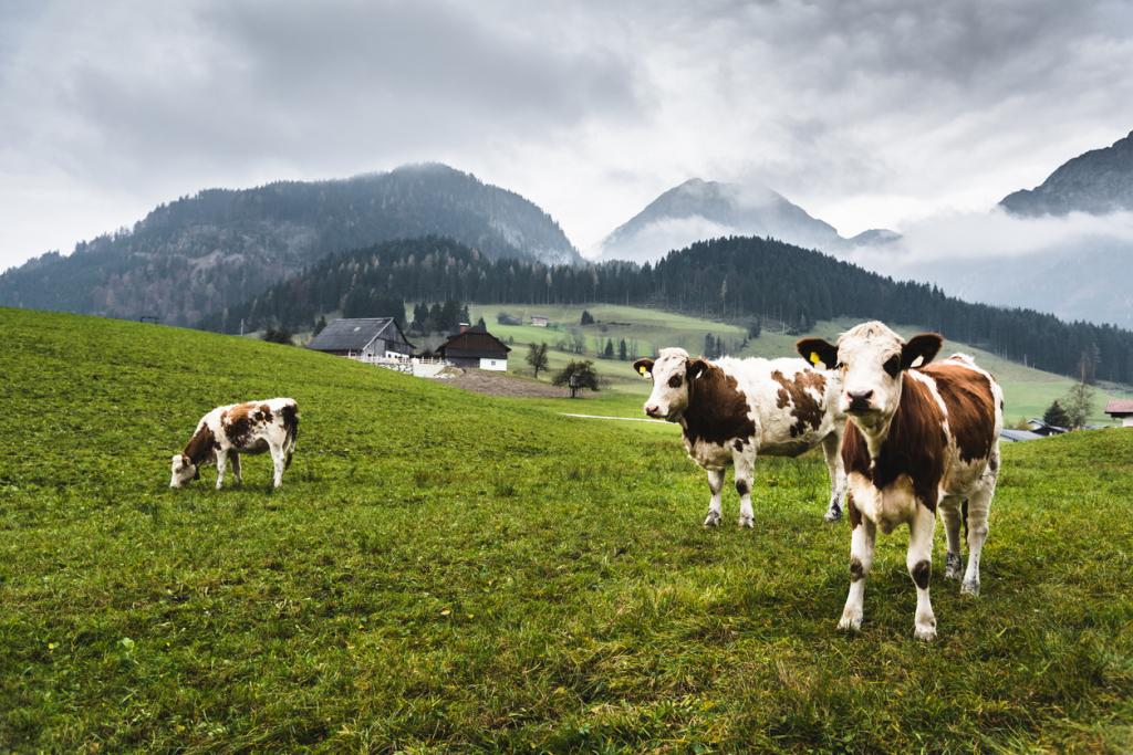 A mezőgazdaság hatása a klímaváltozásra
