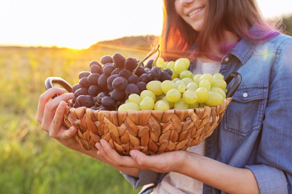 A szőlőfogyasztás előnyei