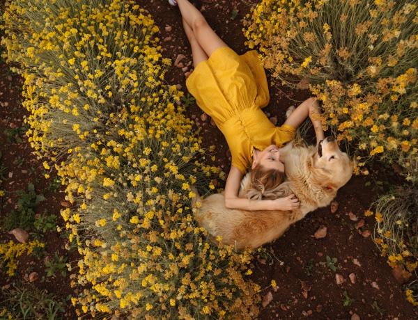 Tavaszi kutya gondozás: ezt az 5 dolgot minden gazdinak tudnia kell