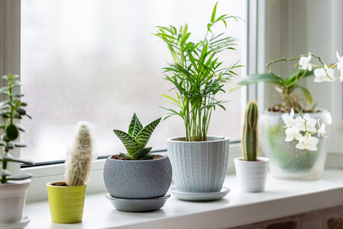 7 mód, hogy újragondold az ablakpárkányodat – Izgalmas megoldások