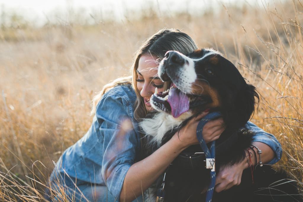 Hangos beszéd kutyához