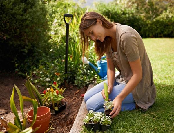 Mit ültessünk áprilisban? A legfontosabb ültetési tanácsok
