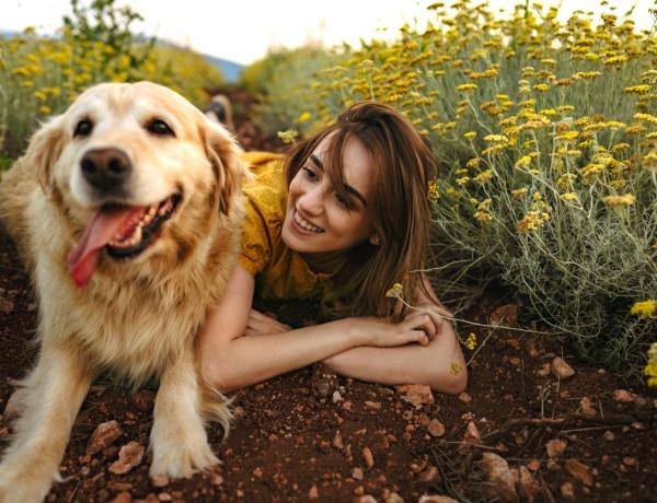Nem csak képzeljük: kiderült, hogy tényleg féltékenyek a kutyáink