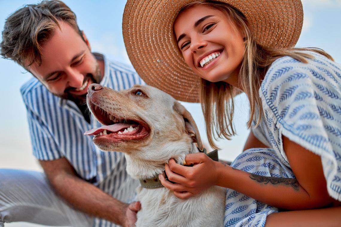 Nyaralás kutyával: 10 tanács, hogy igazán élvezni tudjátok