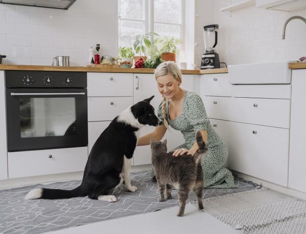 Kiderült: 10 óriási különbség van a kutya és a macskagazdik közt