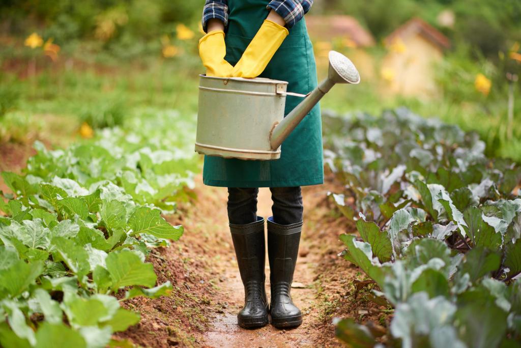 Növénytermesztés előnyei