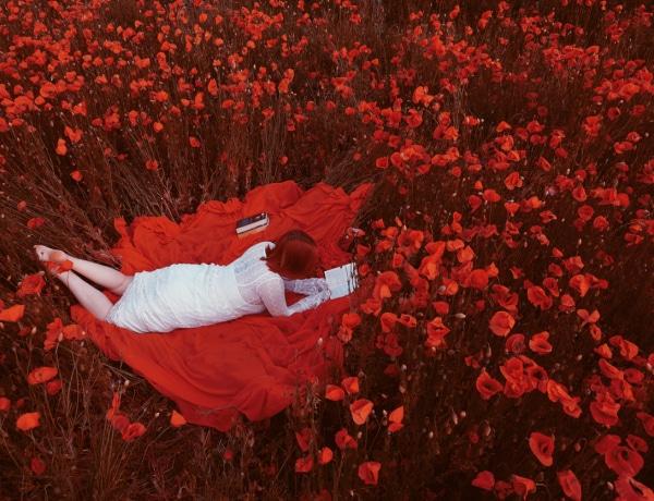 Az 5 kedvenc romantikus regényem, amik szebbé teszik a nyaramat