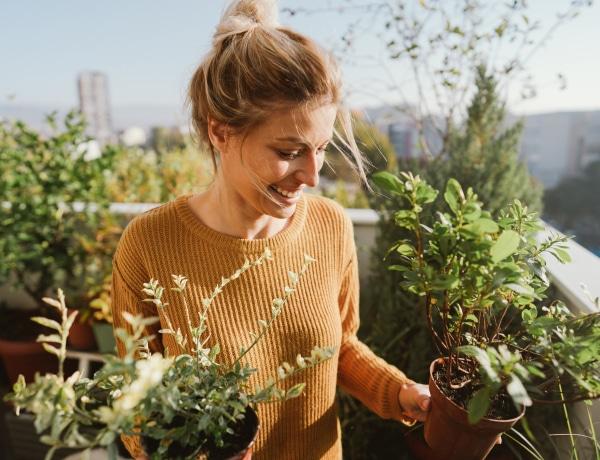 A hortikulturális terápia sikerei