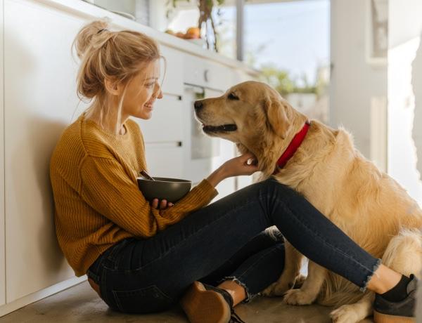 Módszerek, amikkel növelheted kutyád élethosszát