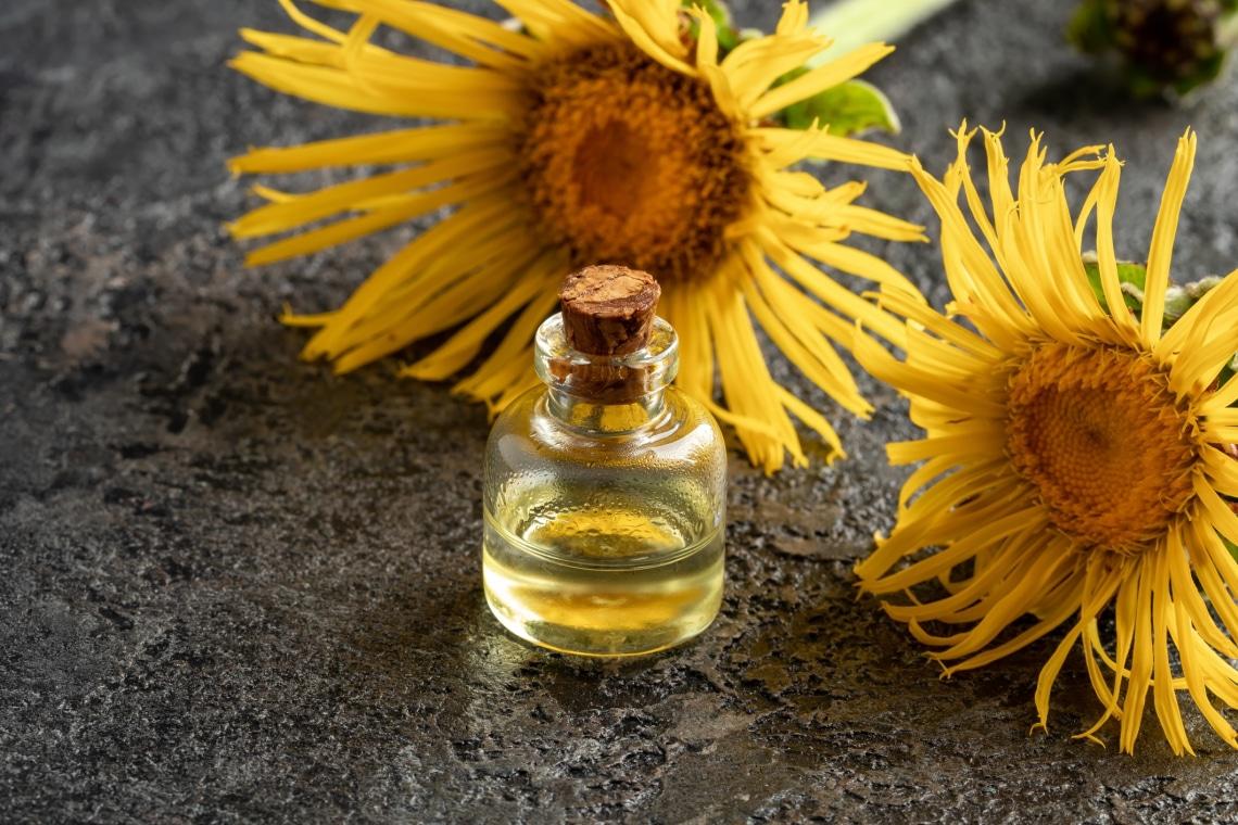 A gyógynövény, ami regenerálja a légzőszerveket